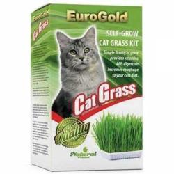 Euro Gold - Euro Gold Cat Grass Kedi Çimi