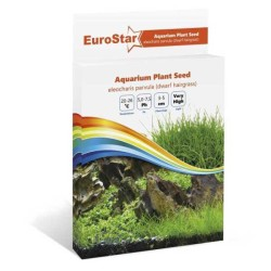Eurostar - Eurostar Bitki Tohumu Eleocharıs Parvula
