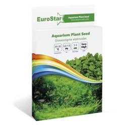 Eurostar - Eurostar Bitki Tohumu Glossostıgma Elatınoıdes