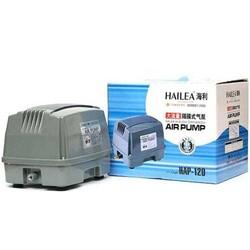 Hailea - Hailea Hap 120 Hava Motoru (1)