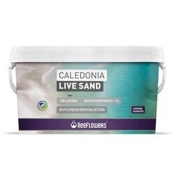 Reeflowers - Reeflowers Caledonia Live Sand Purple 18Kg (1)
