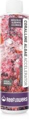 Reeflowers - Reeflowers Coralline Algae Accelerator 250 Ml (1)