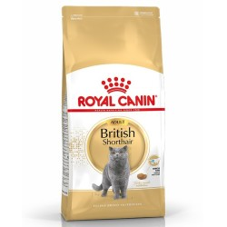 Royal Canın - Royal Canin British Shorthair Yetişkin Kedi Maması 4 Kg.