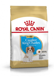 Royal Canin Cavalier King Charles Junior Yavru Köpek Maması 1,5 Kg. - Thumbnail