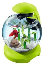 Tetra - Tetra Cascade Globe Filtre Ve Lambalı Fanus Yeşil (1)