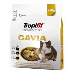 Tropifit - Tropifit Premium Plus Cavia Kobay Yemi 750 Gr