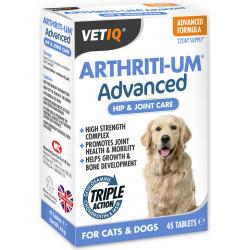 VetIQ - Vetıq Arthiriti-Um Advanced Köpekler İçin Gelişmiş Kalça Ve Eklem Bakımı 45 Tablet (1)